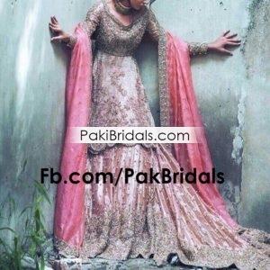 3930af84662 Pakistani Tail Maxi Dress 211 – Pakistan Bridal Dresses