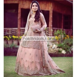 9a114a0f94 Products – Page 4 – Pakistan Bridal Dresses